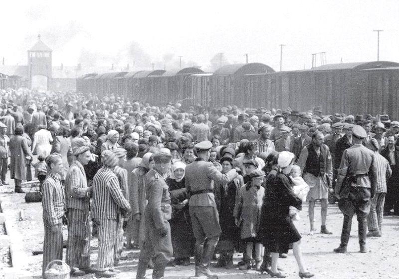 Maj 1944 r. Przyjazd węgierskich Żydów do Auschwitz-Birkenau. Większość trafiła do komór gazowych.
