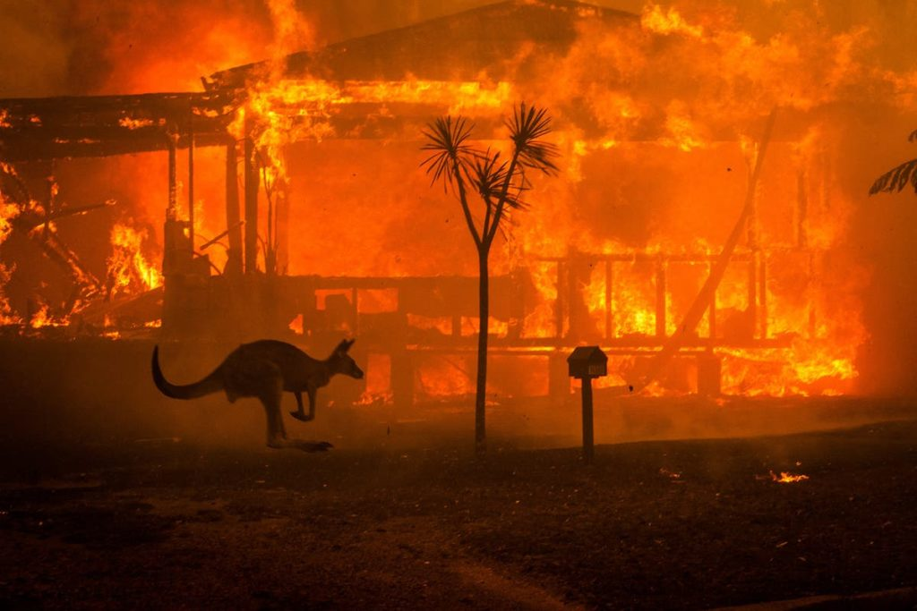 Pożary w Australii.
