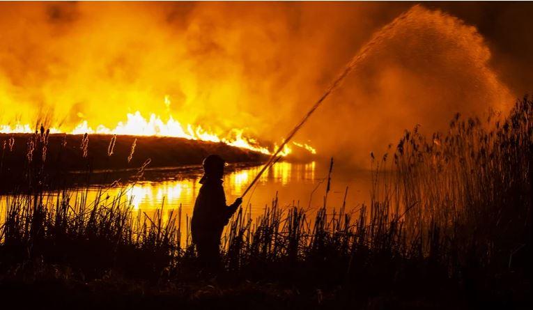 Pożar w Biebrzańskim Parku NArodowym