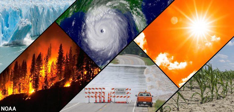 Lolaż zmian klimatu